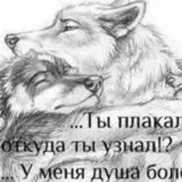 Анкета Далер Шодиев