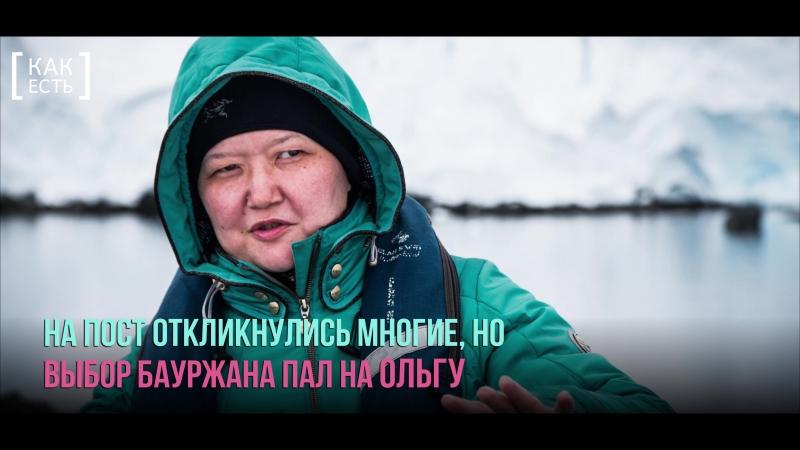За мечтой к Южному Полюсу