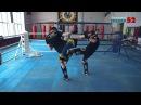 Обучение сильным и быстрым ударам ногами Хай Кик и лоу кик навстречу j extybt cbkmysv b scnhsv elfhfv yjufvb fq rbr b kje