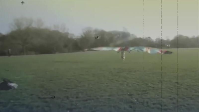 Бионика. Выше неба
