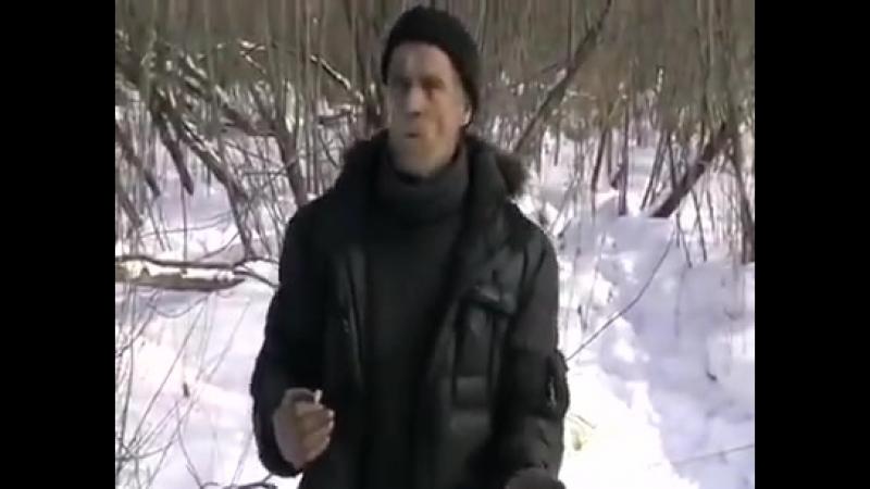 Русский мужик Казахи молодцы, а музыка вообще классная, не то что наша!