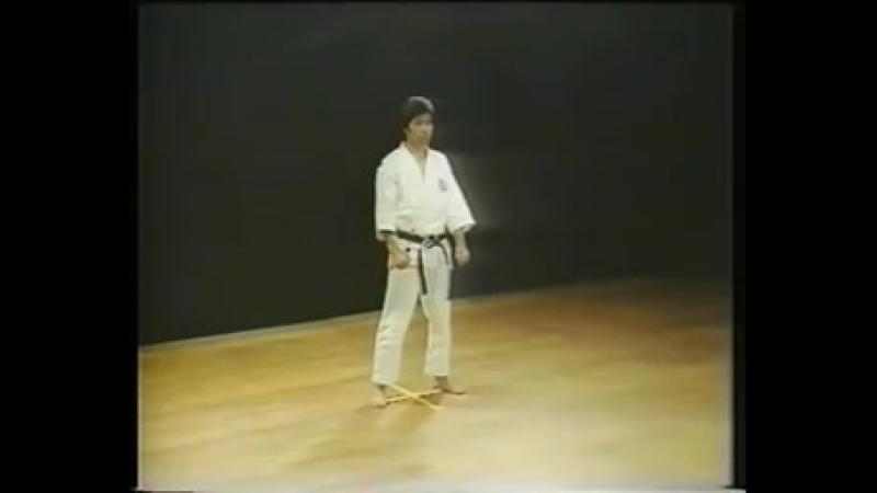 Heian Nidan - Shotokan Karate