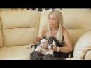 Выбор пола щенка - мальчик или девочка! MY BABY PET. ВСЕ САМОЕ ИНТЕРЕСНОЕ О ПИТОМЦАХ.