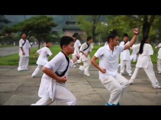 Wudang Daoist Traditional Kungfu Academy
