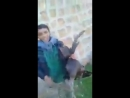 Бедуины ССА похитили Мелеки-Тауса в кантоне Африн