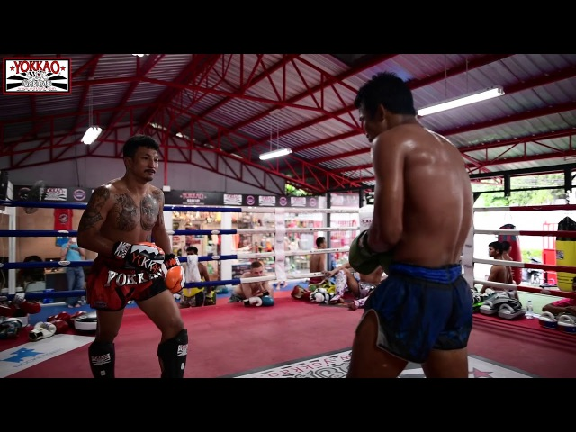 Muay Thai Champions Singdam sparring with Pakorn - YOKKAO Training Center Bangkok