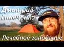 Лечебное голодание Дмитрий Пшеченко Экопоселение Здравое