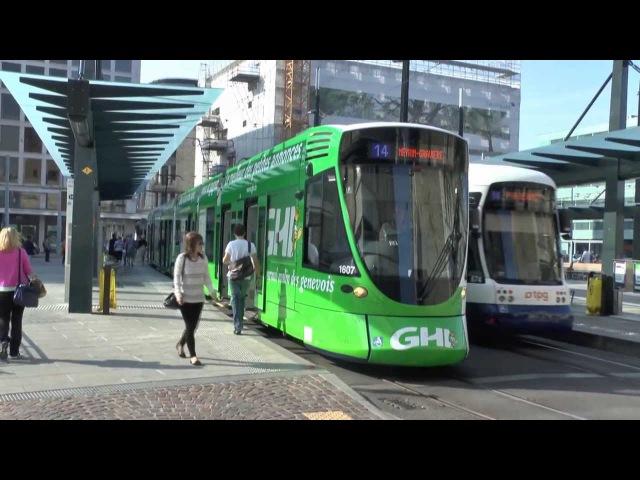 310813 - Trams Trolleybuses - Geneva - Switzerland