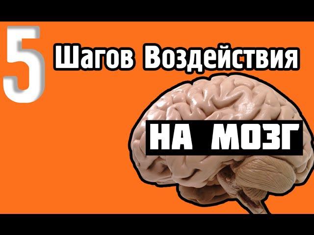5 Шагов Воздействия на Мозг (Сила Обратной Связи). Наука и технологии воздействия на человека.