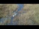 В ВКО браконьеров теперь выслеживают с помощью дронов