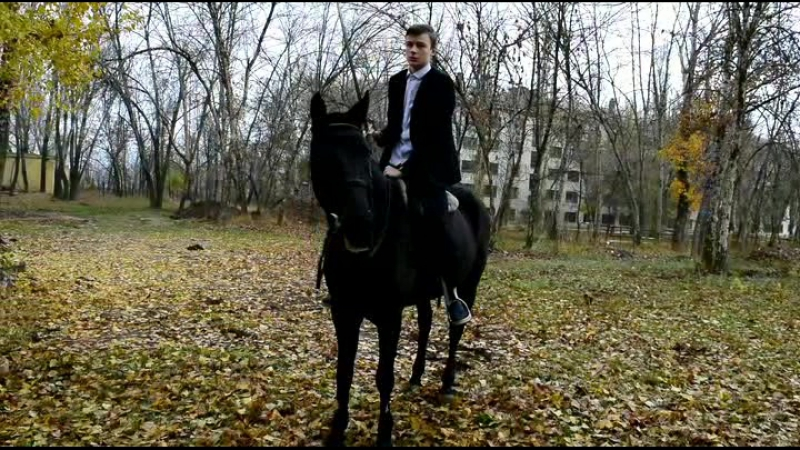 Визитка Мистер ИП 2017 Алексей Бутенко