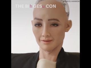 The 11 best, worst, and weirdest robots of 2017