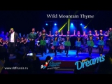 Show DREAMS_ Wild Mountain Thyme