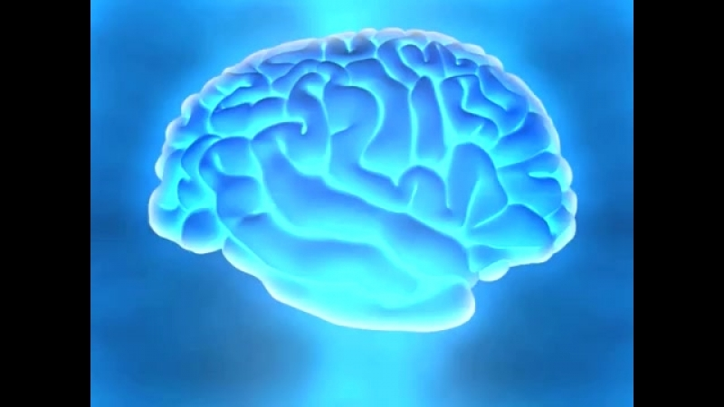 Brain food _ Super learning fast skills for memory recall, study exams