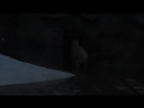 Белый медведь проказничает в Ижевском зоопарке