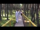 древарх танцующий лес