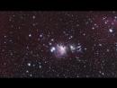 ALMA разглядела детали газовой «паутины» в туманности Ориона