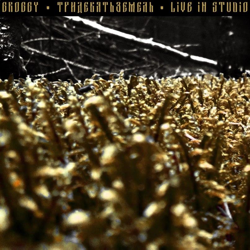 Новый релиз GROGGY - Тридевятьземель. Live in Studio (2017)