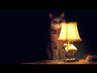 Сказки на ночь: читаем Макса Фрая вслух