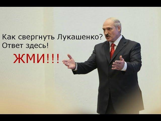 Жми! Как свергнуть Лукашенко и его банду? Молчун не молчит.