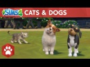 The Sims 4 Cats Dogs: Official Launch Trailer