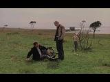 Жертвоприношение, фильм (1986)