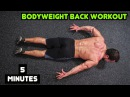Intense 5 Minute At Home Back Workout 2