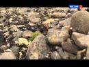 Лучшие видео youtube на сайте main- Земля Франца-Иосифа. Архипелаг тающей мерзлоты. Документальный фильм