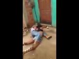 Women girls catfight