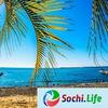 Sochi.Life | Все интересное о жизни Сочи