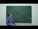 Цитология. Общие принципы строения клеток. Клеточная теория. Про- и эукариоты