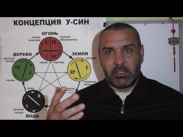 Теория У СИН Очищение организма Видео 4