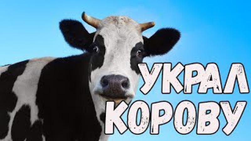 Приколы с животными 2017 Ну очень смешные животные Украл корову Новые видео прико ...