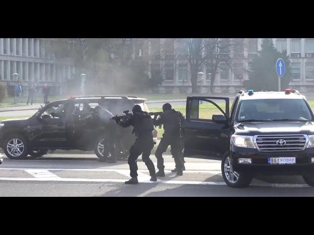 Спецназ Сербии Кобра