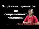 Станислав Дробышевский От ранних приматов до возникновения современного человека