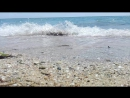 Море сегодня +25 градусов,просто СУПЕР! море 29.06.17
