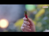 [UkrSub   ShuShe] Донька полум'я / The Flame's Daughter (05 серія)