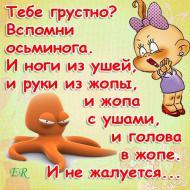 не грусти,бери пример с осьминога !!