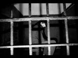 Валерий Павлов - Взял вину на себя (СЕКТОР ГАЗА)