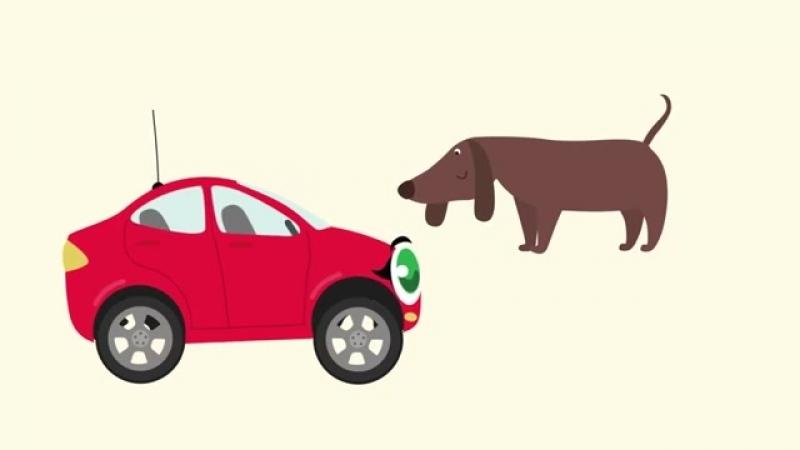 Мультики про машинки - БИБИКА - Про животных - Обучающие мультфильмы для самых м