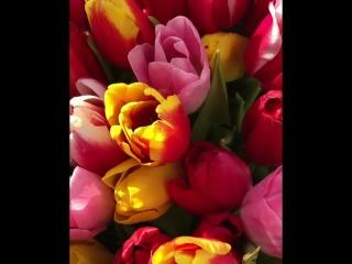 запахло весной