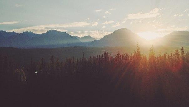 Каждое утро, проснувшись, начинай с мыслей: «Сегодня мне повезло, — я проснулся. Я жив, у меня есть эта драгоценная человеческая жизнь, и я не стану тратить её впустую».