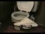 Когда зашел в туалет в К.К.Х