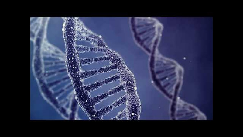 the controversy of dna fingerprinting in the law enforcement (also called dna fingerprinting, dna sally hemings controversy to determine if law enforcement officials to test dna samples from.