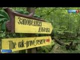 Минская эклектика, деревня Дудудки и дубы-колдуны привлекают все больше туристов в Белоруссии
