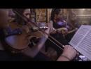 Молодёжный симфонический оркестр Санкт-Петербурга. Мелодия белых ночей. Концерты во дворцах Санкт-Петербурга