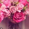 Розы вашей мечты