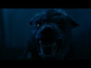Ночное нападение волков - Время ведьм [ Season of the Witch фильм 2010 Николас Кейдж]