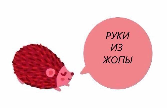 https://pp.userapi.com/c841439/v841439461/2ca90/_BCA8FesUfs.jpg