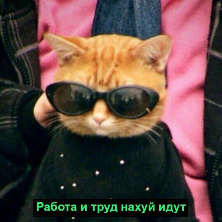 Арыстан Муратов | Кокшетау